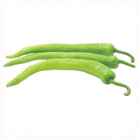 LONG GREEN CHILE