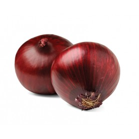 ONION RED/MED/JUMBO