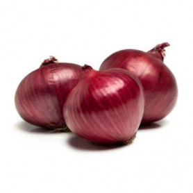 RED PEARL ONION