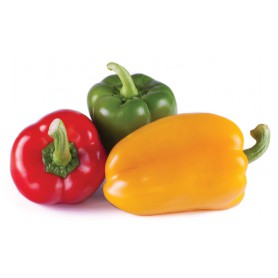 RED/ORANGE/YELLOW BELL PEPPER
