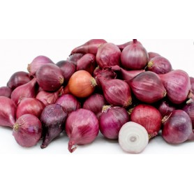 RED PEARL ONION 10OZ